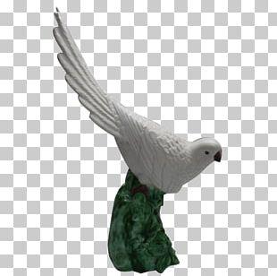 Beak Bird Of Prey Figurine Fauna PNG