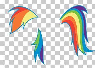 Rainbow Dash Mane My Little Pony PNG