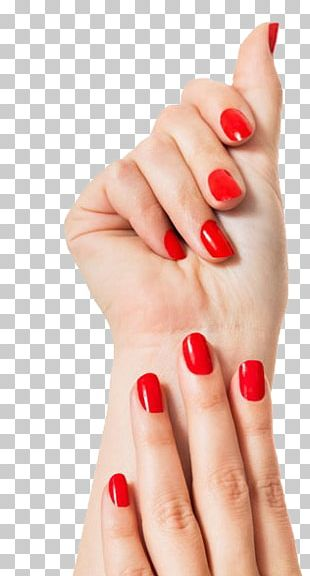 Nail Polish Manicure Nail Salon Beauty Parlour PNG