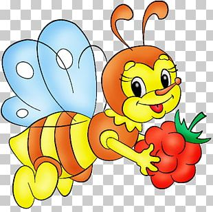 Honey Bee Maya Bumblebee PNG