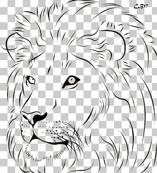 Lion Tiger Line Art Drawing PNG