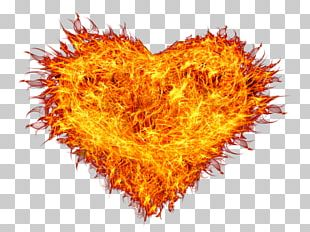 Flame Portable Network Graphics Fire Combustion PNG
