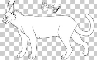 Whiskers Cat Hare Line Art Tail PNG