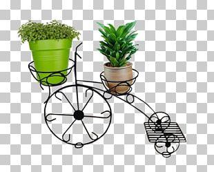 Flowerpot Tree Grasses Herb PNG