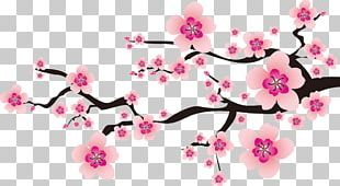 Plum Blossom Peach Drawing PNG