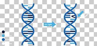 Ultraviolet Blacklight Wavelength Spectrum PNG