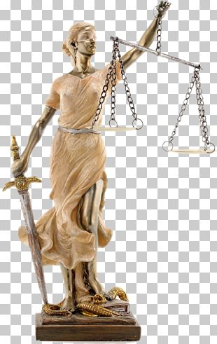 Financial Justice: The Peoples Campaign To Stop Lender Abuse Lawyer Finance Lady Justice PNG
