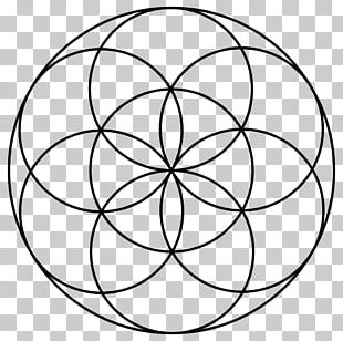 Sacred Geometry Overlapping Circles Grid PNG