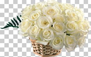 Desktop Rose Flower Bouquet White PNG
