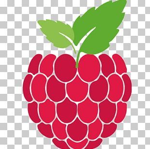 Raspberry Roots Raspberry Pi Raspberry Road Arduino General-purpose Input/output PNG