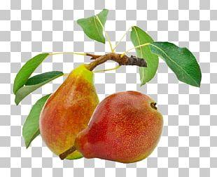 Organic Food Pear Gluten Nut PNG