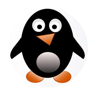 Penguin Free Content PNG