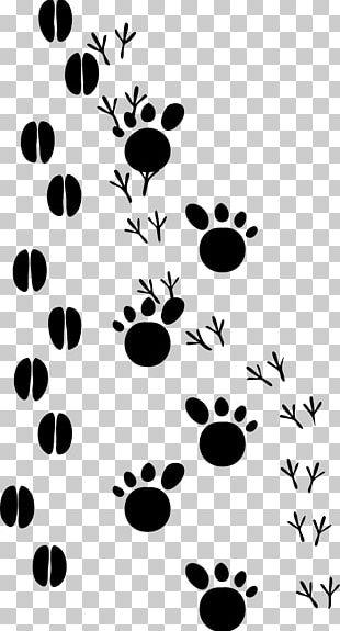 Paw Animal Track Footprint Animal Print PNG