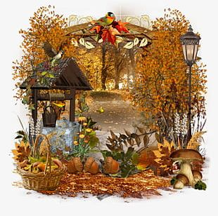 Cartoon Autumn Background Concentration PNG