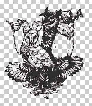 Owl Drawing Art PNG