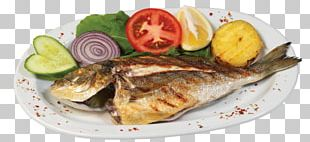 Fried Fish Squid As Food Gilt-head Bream Seafood PNG