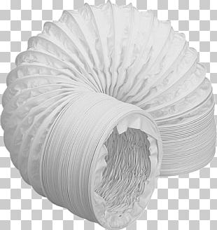 White Circle PNG