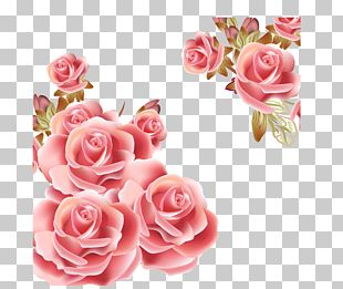 Flower Rose Pink PNG