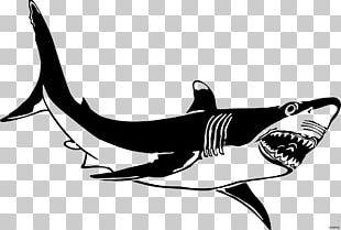 Great White Shark Bull Shark Isurus Oxyrinchus PNG