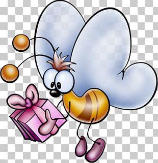Happy Birthday To You Tanti Auguri A Te Anniversary Wish PNG