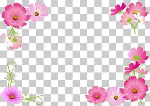 Flower Cosmos ふくしま子ども支援センター Paper PNG