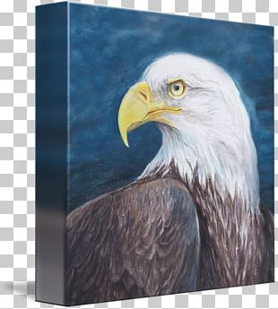 Bald Eagle Thanjavur Painting Narsinghji Temple Narasimha PNG