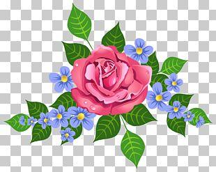 Pink Rose Decorative Element PNG