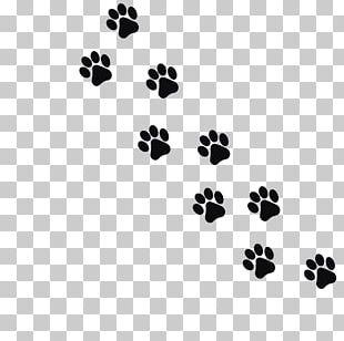 Cat Dog Kitten Footprint Paw PNG