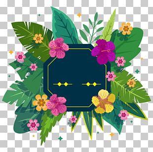 Floral Design Flower Plant Tropics PNG