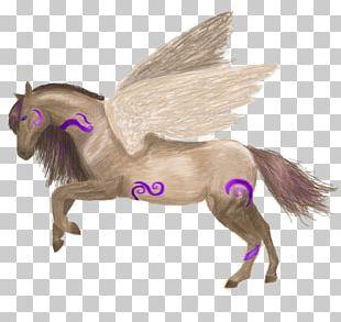 Mustang Freikörperkultur Snout Legendary Creature Yonni Meyer PNG