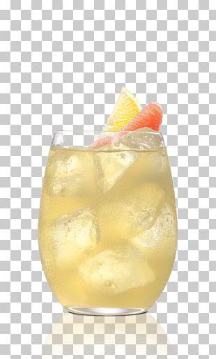 Mai Tai Cocktail Garnish Harvey Wallbanger Gin And Tonic Sea Breeze PNG