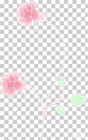 Petal Flower Floral Design Rose Family Desktop PNG