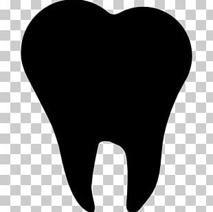 Human Tooth Computer Icons Dentistry PNG