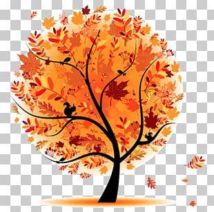 Tree Autumn Cartoon PNG