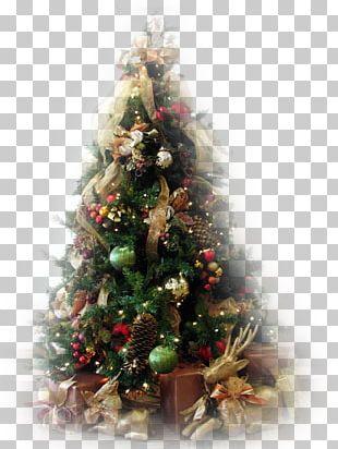 Christmas Tree Christmas Ornament Fir Santa Claus PNG
