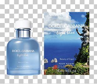 Dolce Gabbana Fragrances Light Blue Dolce & Gabbana Perfume Eau De Toilette PNG