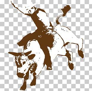 Rodeo Cowboy Bucking Bull Bull Riding PNG