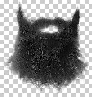 Beard Whiskers Moustache Goatee PNG