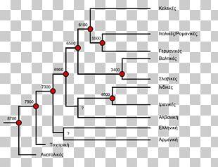 Indo-European Languages Glottochronology Proto-Indo-European Language Balto-Slavic Languages Indo-European Linguistics: An Introduction PNG