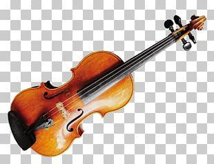 Violin String Instruments Musical Instruments Viola PNG