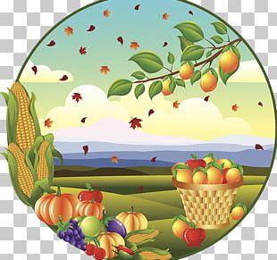 Autumn Drawing Harvest Illustration PNG