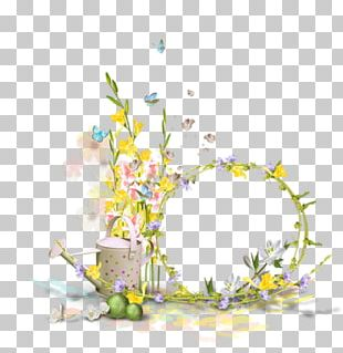 Photography Flower PNG