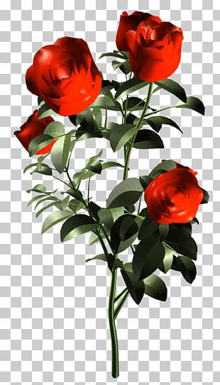 Garden Roses Floribunda Floral Design Cut Flowers PNG