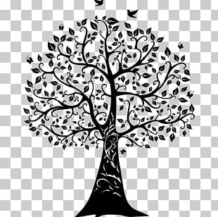Paper Wall Decal Tree Of Life PNG
