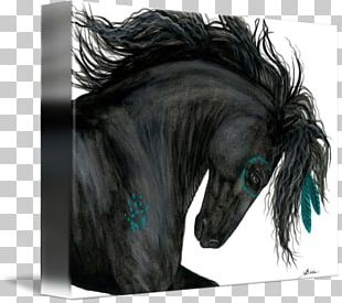 Mustang Friesian Horse American Paint Horse Mane Stallion PNG