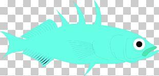 Marine Biology Deep Sea Fish Marine Mammal Desktop Fauna PNG