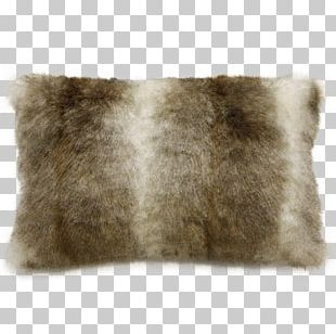 Fur Beige Rabbit Chinchilla Arctic Fox PNG
