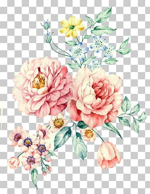 Moutan Peony Watercolor Painting PNG