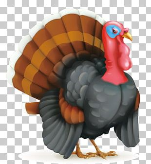 Thanksgiving Day Turkey Illustration PNG