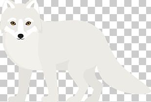 Arctic Fox Dog Breed Bear Whiskers PNG
